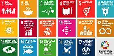 ALTEN Sverige ska vara helt klimatneutrala år 2030